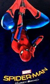 Spider-Man Homecoming (2017).jpg
